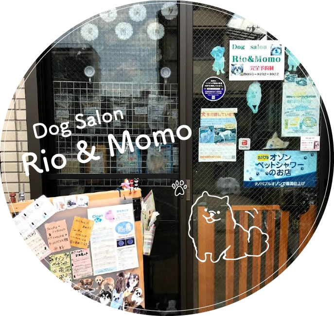 Rio&Momo